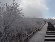 지리산국립공원 노고단에 상고대에 이어 올겨울 첫눈이