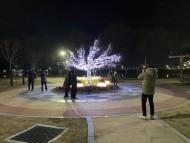 '추운겨울, 불빛으로 즐거움을 더하다'